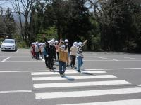 横断歩道2